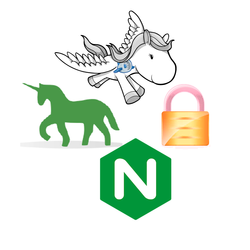 Django, gunicorn, nginx, and https logos